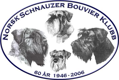 Trykk her for å komme til sidene til Norsk Schnauzer Bouvier Klubb
